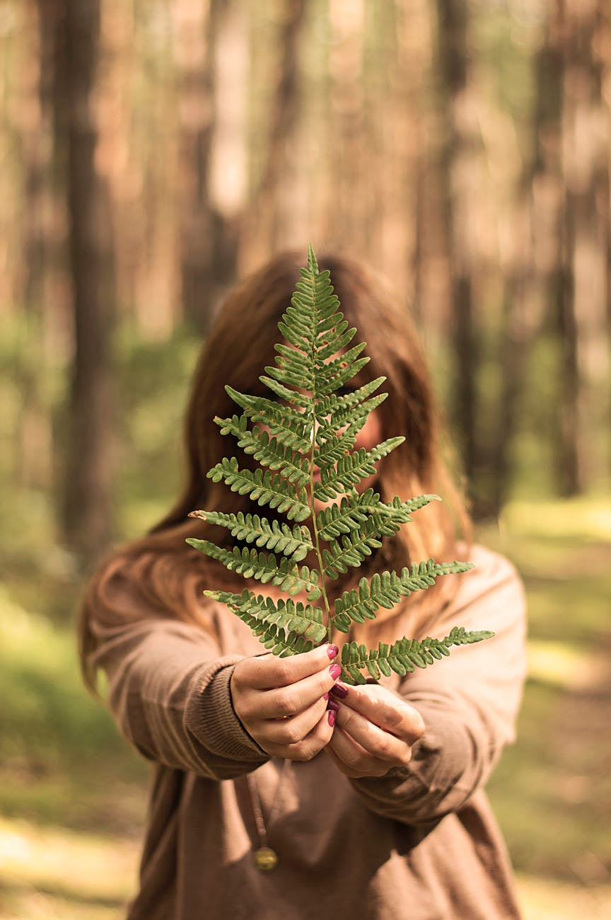 selective focus photography of woman holding leaf in forest