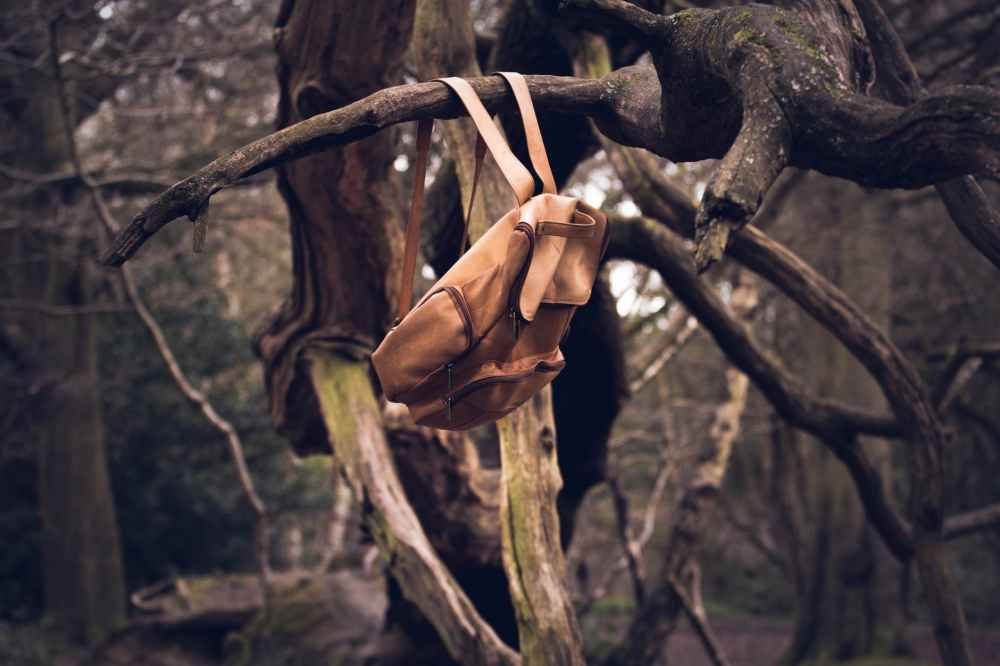 backpack bag branches forest